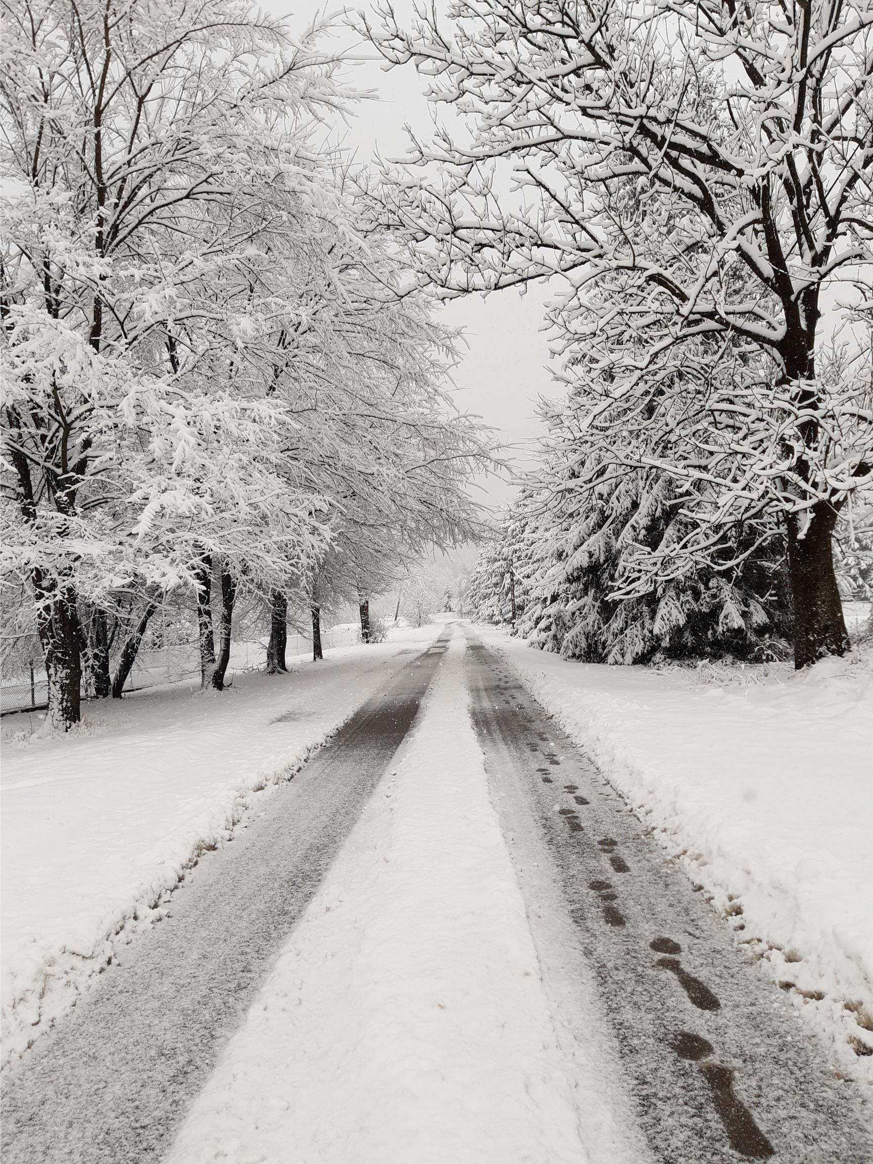 Zima w kadrze